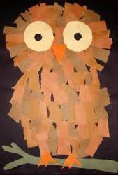 Owl , web