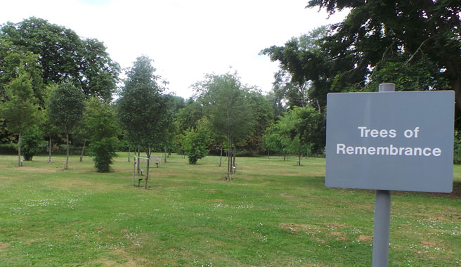 Trees of remembrance area at Kingsdown cemetery