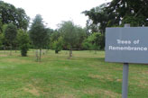 Trees of remembrance area